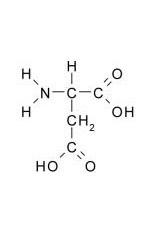 racemizarea acidului aspartic datând)