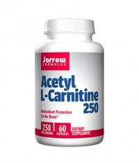 Jarrow Formulas Acetyl L-Carnitine / 60 Caps.
