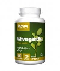 Jarrow Formulas Ashwagandha / 120 Caps.