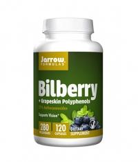 Jarrow Formulas Bilberry + Grapeskin Polyphenols / 120 Caps.