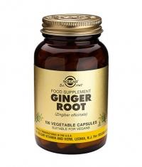 SOLGAR Ginger Root / 100 Caps