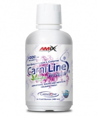 AMIX CarniLine ProActive with Green Tea  480 ml.