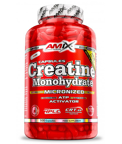amix Creatine Monohydrate 800mg. / 500 Caps.