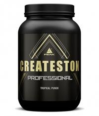 PEAK Createston Professional