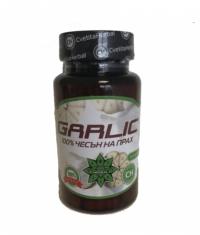 CVETITA HERBAL Garlic 100 % / 60 Caps.
