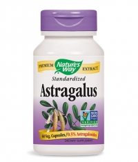 NATURES WAY Astragalus Standardized / 60 Vcaps.