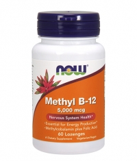 NOW Methyl B-12 500mcg / 60 Loz.