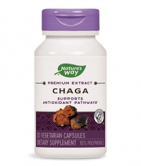 NATURES WAY Chaga 480mg. / 30 Vcaps.