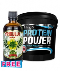 PROMO STACK BIRTHDAY TRIBU POWER Stack