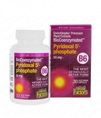 NATURAL FACTORS Vitamin B6 (Pyridoxal 5-Phosphate) 50mg. / 30 Vcaps