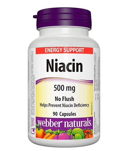 webber-naturals Niacin 500mg / 90 Caps
