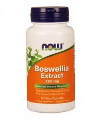 NOW Boswellia Extract 60 VCaps.