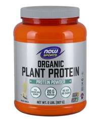 NOW Organic Plant Protein