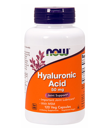now Hyaluronic Acid with MSM / 120 Caps