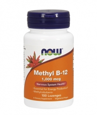 NOW Methyl B-12  1,000mcg.