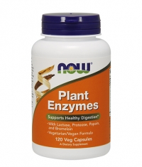 NOW Plant Enzymes 120 VCaps.