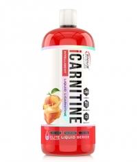 GENIUS NUTRITION iCARNITINE LIQUID / 1000 ml