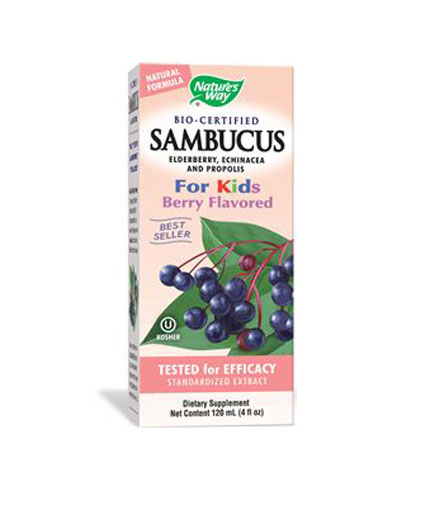 NATURES WAY Sambucus For Kids 120ml.