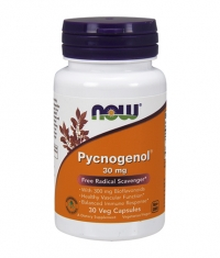 NOW Pycnogenol 30mg / 60 Caps.