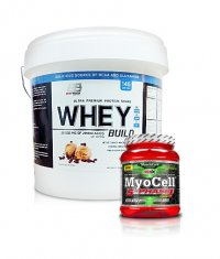 PROMO STACK Everbuild Whey Build 10 Lbs. / Amix Myocell 5-Phase 500g.