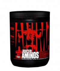 UNIVERSAL ANIMAL Juiced Aminos